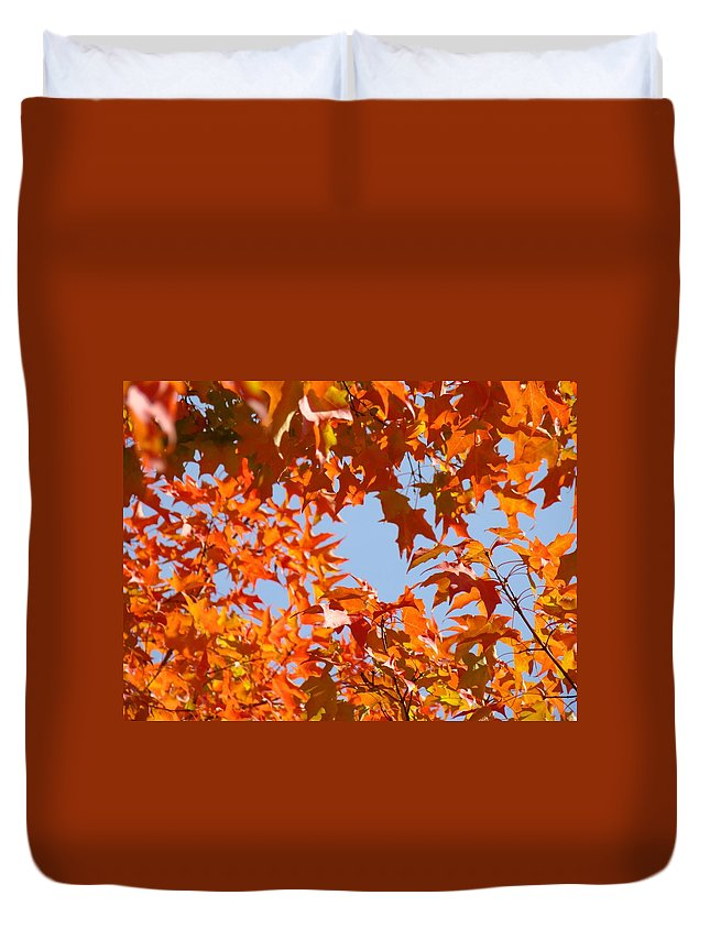 Autumn Duvet Cover featuring the photograph Fall Leaves Art Prints Autumn Red Orange Leaves Blue Sky by Baslee Troutman