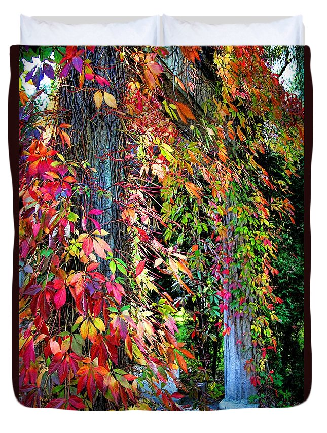 Fall Palette Duvet Cover featuring the photograph Fall Palette by Mariola Bitner