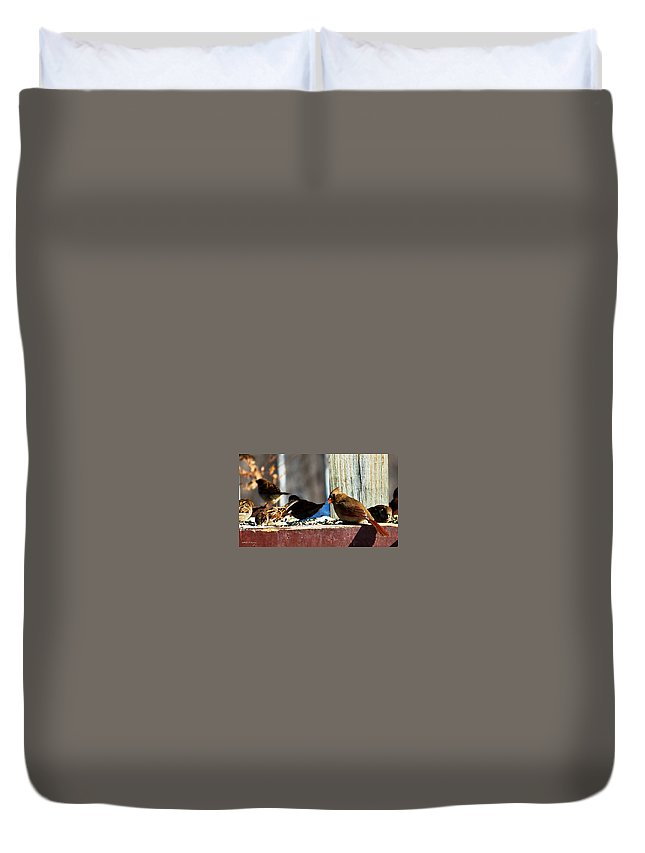 Heron Haven Duvet Cover featuring the photograph Feeding Frenzy by Edward Peterson