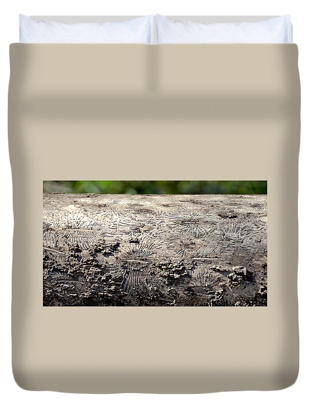 Usa Duvet Cover featuring the photograph Fell By The Mighty Bark Beetle by LeeAnn McLaneGoetz McLaneGoetzStudioLLCcom