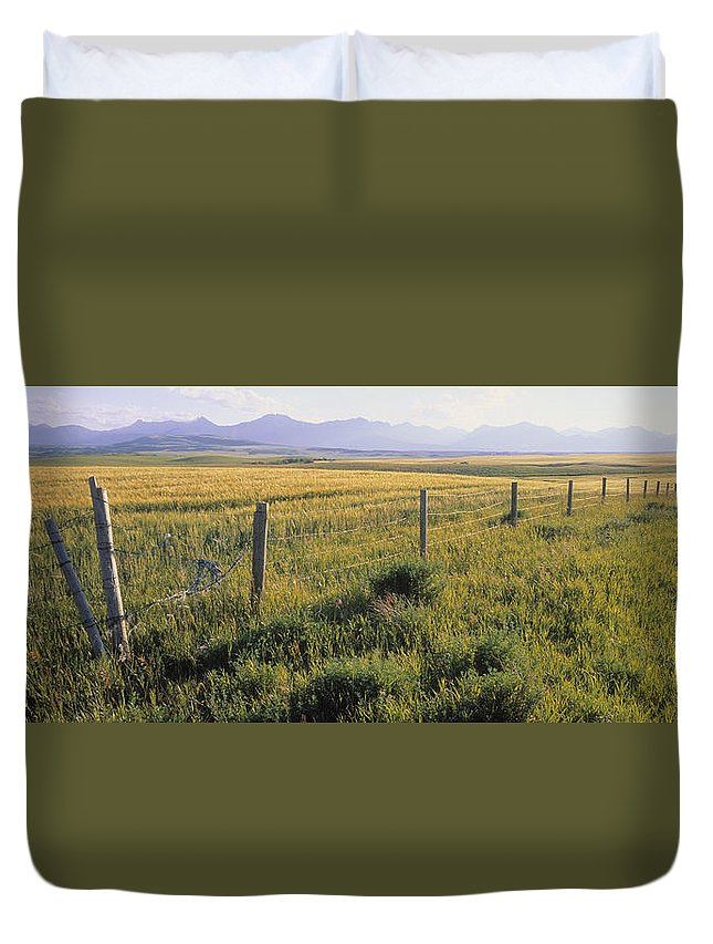 Light Duvet Cover featuring the photograph Fence And Barley Crop, Near Waterton by Darwin Wiggett