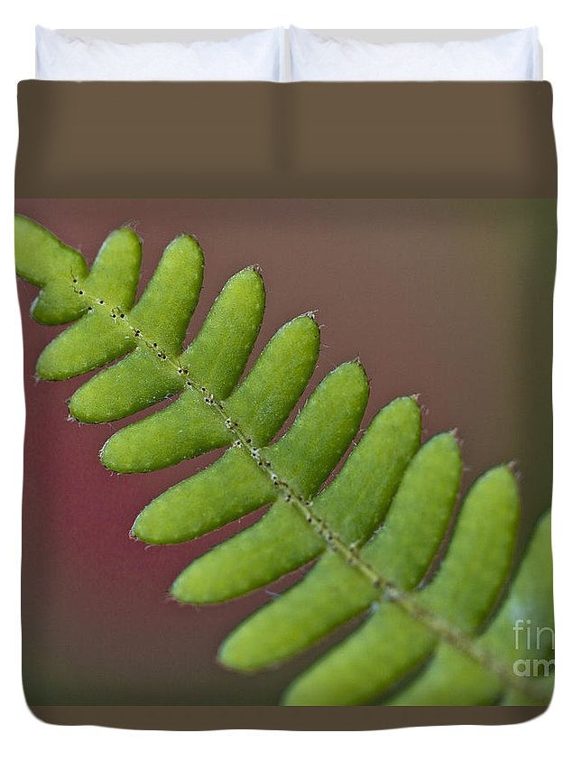 Heiko Duvet Cover featuring the photograph Fern Detail by Heiko Koehrer-Wagner