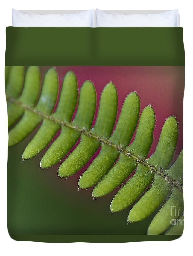 Heiko Duvet Cover featuring the photograph Fern Leaf by Heiko Koehrer-Wagner