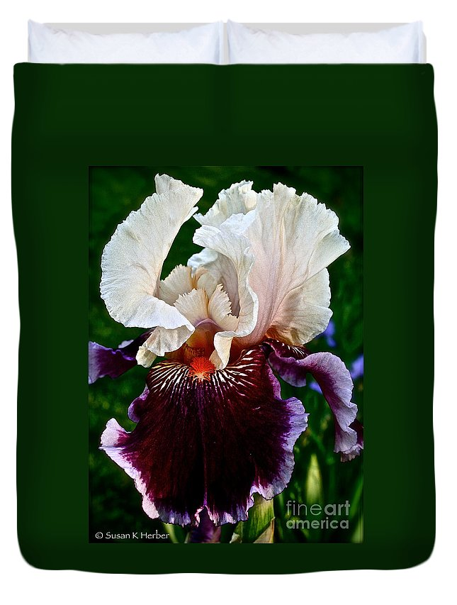 Plant Duvet Cover featuring the photograph Festive Iris by Susan Herber