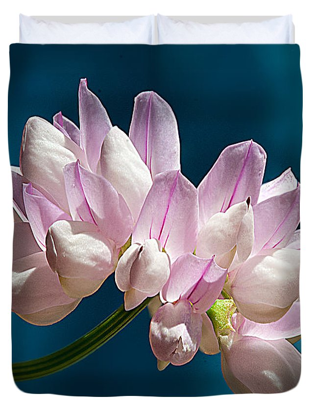 Flower Fetch Clover Like Duvet Cover featuring the photograph Fetch Flower by Randall Branham