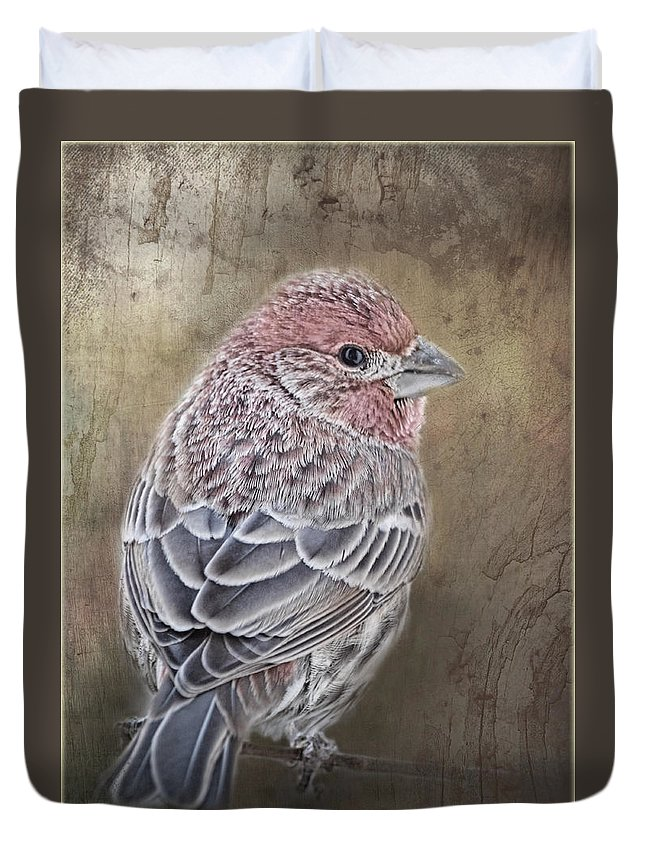 Nature Duvet Cover featuring the photograph Finch Low Saturation by Debbie Portwood