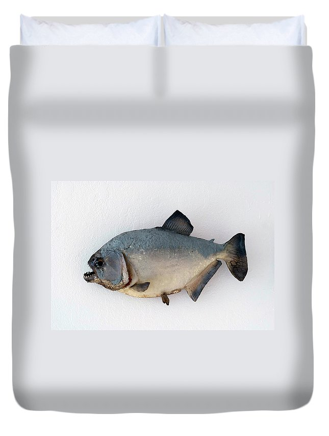 Animals Duvet Cover featuring the photograph Fish Mount Set 04 A by Thomas Woolworth