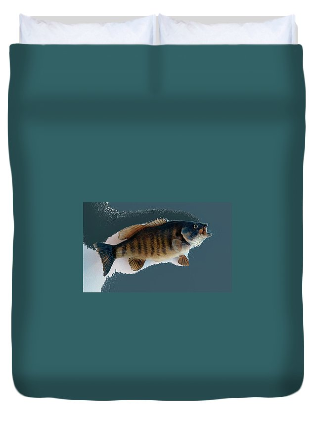 Animals Duvet Cover featuring the photograph Fish Mount Set 10 B by Thomas Woolworth
