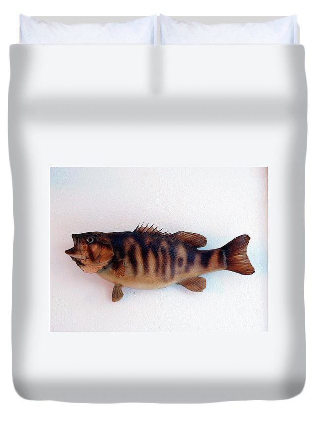Animals Duvet Cover featuring the photograph Fish Mount Set 11 A by Thomas Woolworth