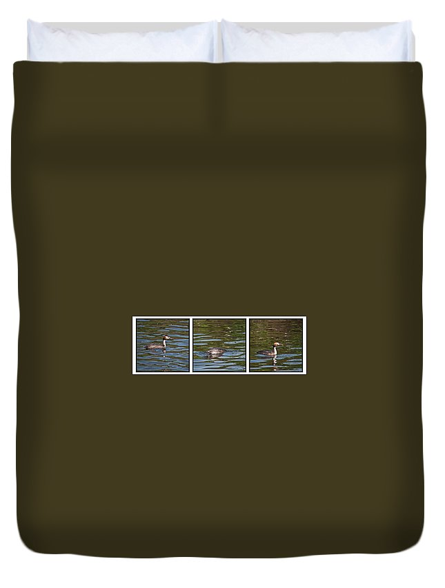 Great Crested Grebe Duvet Cover featuring the photograph Fishing For Breakfast by Steve Purnell