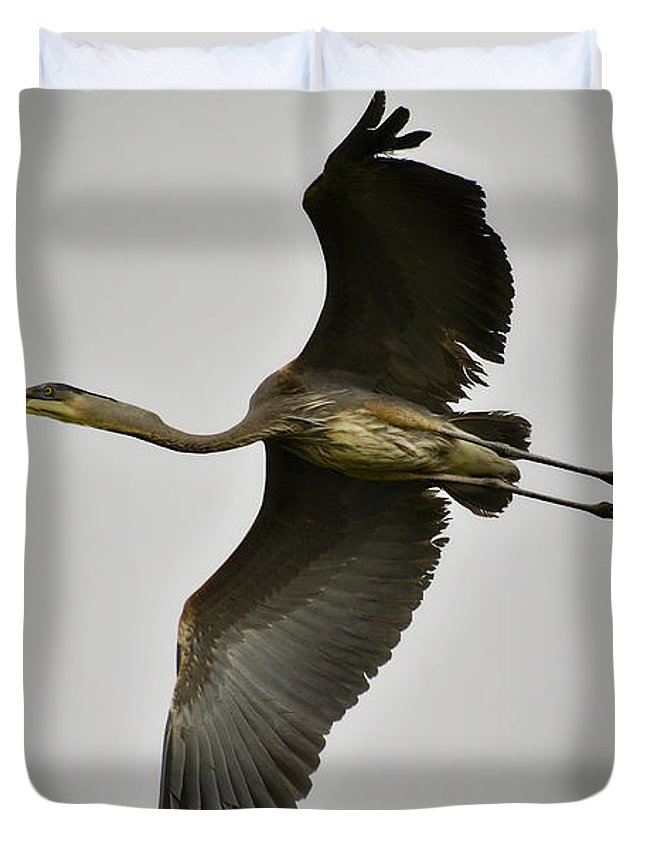 Great Blue Heron Duvet Cover featuring the photograph Flight Of The Great Blue Heron by Saija Lehtonen
