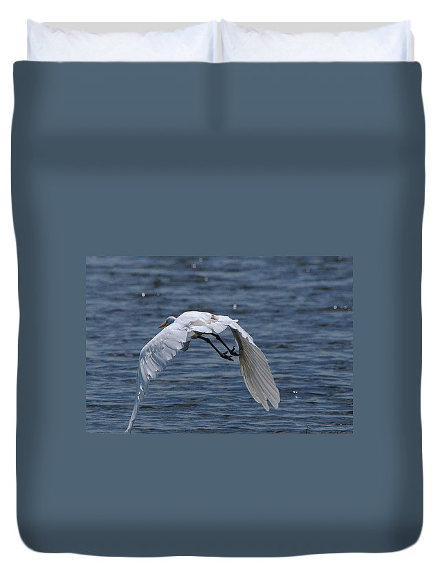 Egret Duvet Cover featuring the photograph Flight Over The Lake 3 by Roy Williams