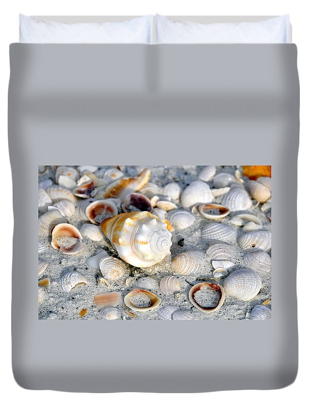 Fine Art Photography Duvet Cover featuring the photograph Florida Shells by David Lee Thompson
