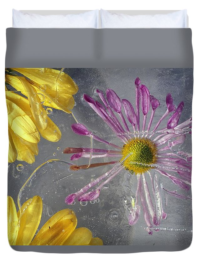 Winter Duvet Cover featuring the photograph Flower Blossoms Under Ice by Natural Selection Craig Tuttle