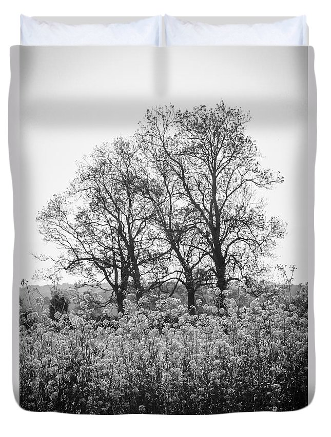 Trees Duvet Cover featuring the photograph Flower Homage To The Trees by Rene Triay Photography