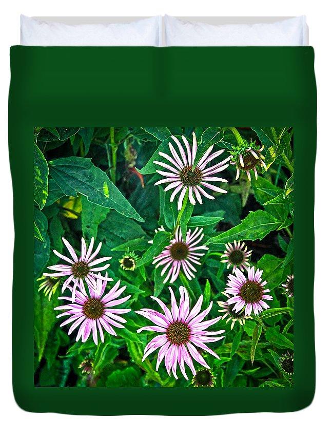 Sunflower Duvet Cover featuring the photograph Flower Patterns by Steve McKinzie