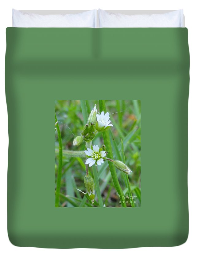 Flower Duvet Cover featuring the photograph Flowers Of The Grass by Meandering Photography