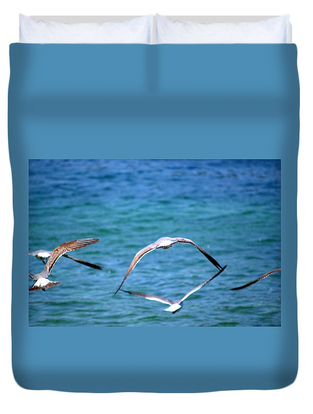Seagulls Duvet Cover featuring the photograph Fly Away Home by Kari Tedrick