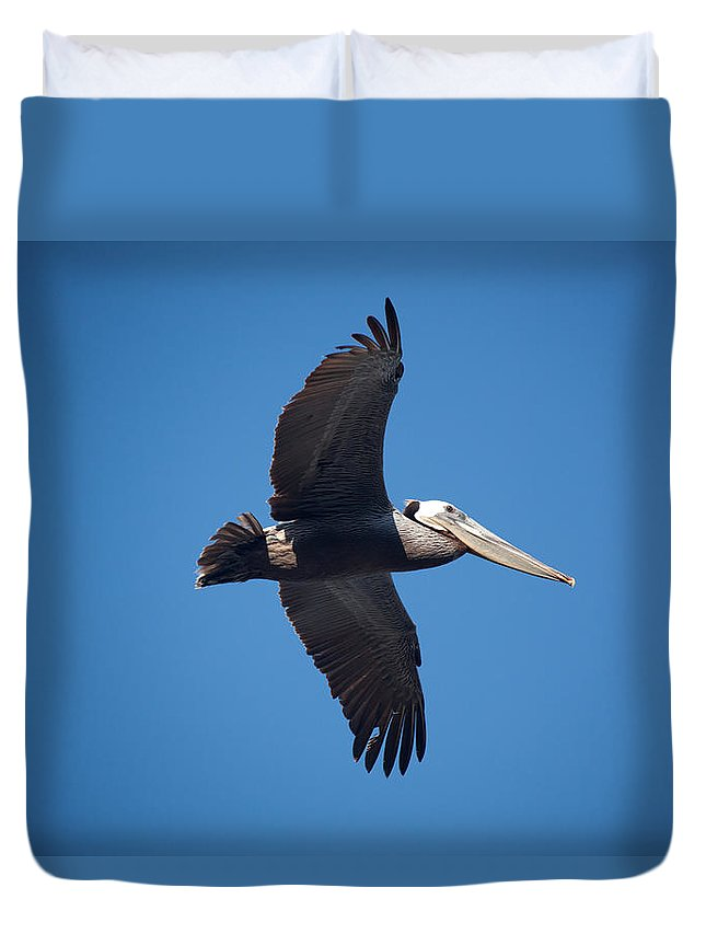 Pelican Duvet Cover featuring the photograph flying Pelican by Ralf Kaiser