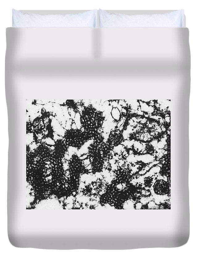 Foot-and-mouth Disease Virus Duvet Covers