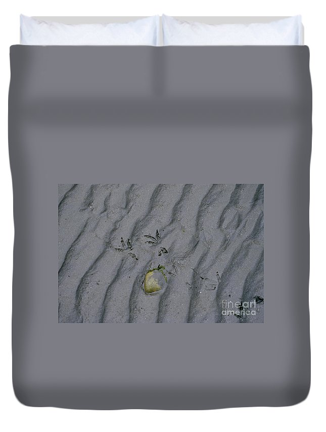 Sand Duvet Cover featuring the photograph Footprints by Sharon Elliott