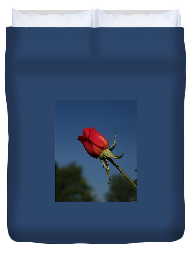 For You Duvet Cover featuring the photograph For You by Ernie Echols