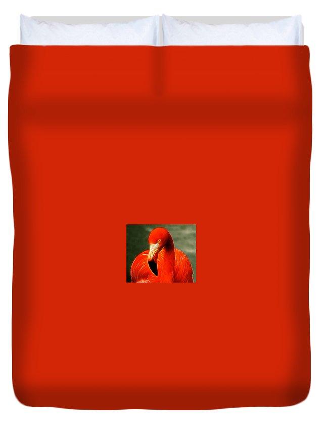 Flamingo Duvet Cover featuring the photograph Fractalius Flamingo by Chris Thaxter