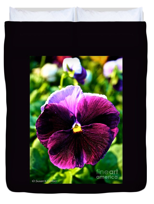 Outdoors Duvet Cover featuring the photograph Fresh Face Pansy by Susan Herber