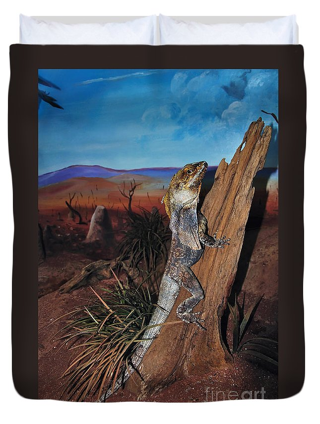 Photography Duvet Cover featuring the photograph Frill-necked Lizard by Kaye Menner