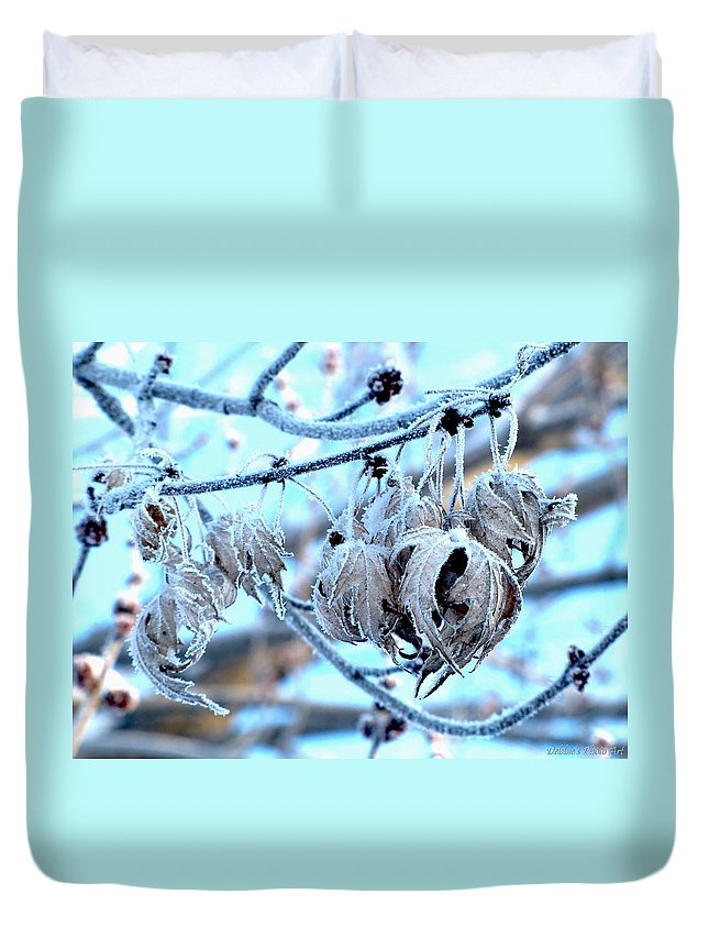 Nature Duvet Cover featuring the photograph Frozen IIi by Debbie Portwood