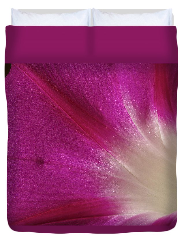 Morning Glory Duvet Cover featuring the photograph Fuchsia Morning Glory by Phyllis Denton