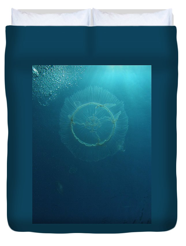 Wildlife Nature Ocean Blue Sea Duvet Cover featuring the photograph Full Moon Jelly by Kimberly Mohlenhoff