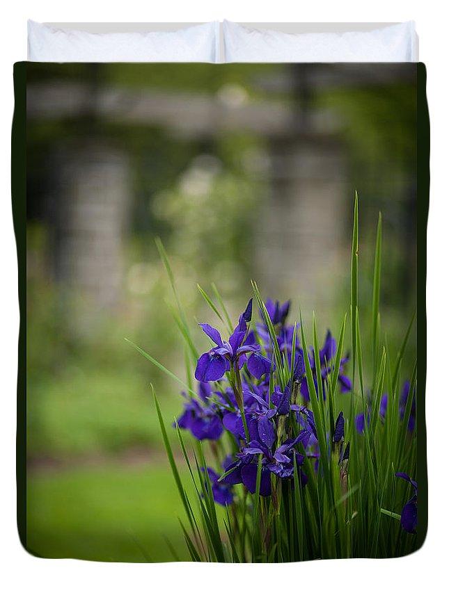Iris Duvet Cover featuring the photograph Garden Blue Irises by Mike Reid