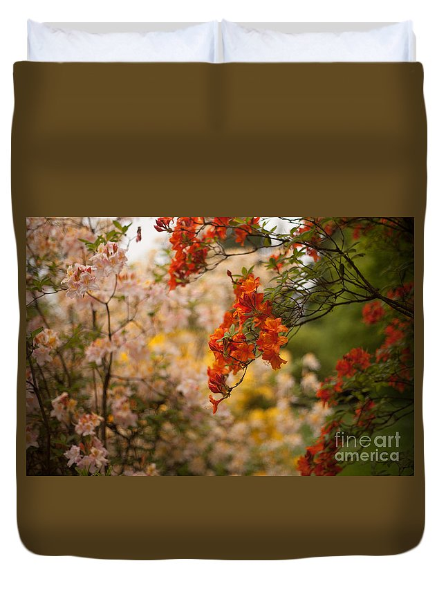 Rhodies Duvet Cover featuring the photograph Gathering Of Radiance by Mike Reid