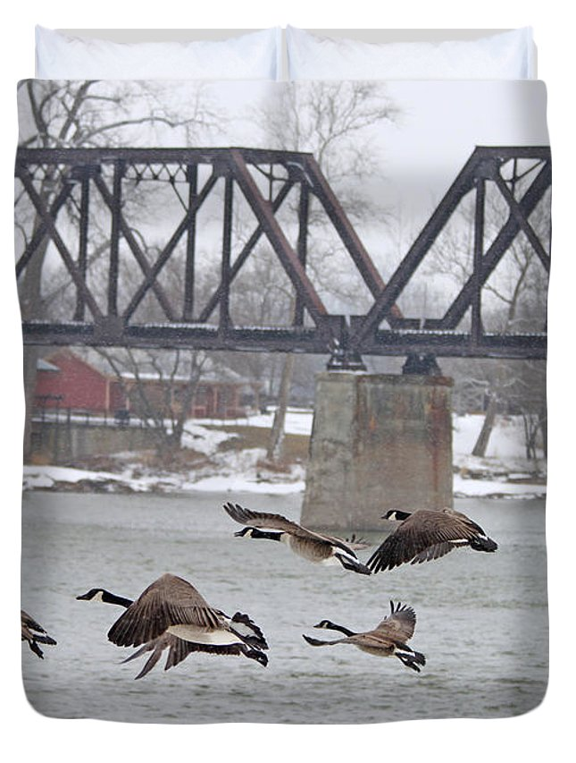 Geese Duvet Cover featuring the photograph Geese In Flight by Jack Schultz