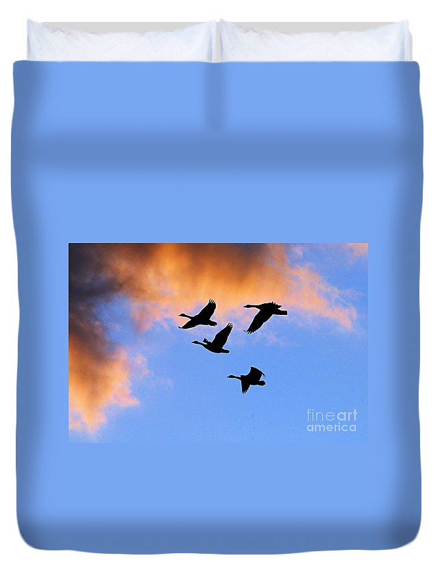 Photography Duvet Cover featuring the photograph Geese Silhouetted At Sunset - 1 by Larry Ricker