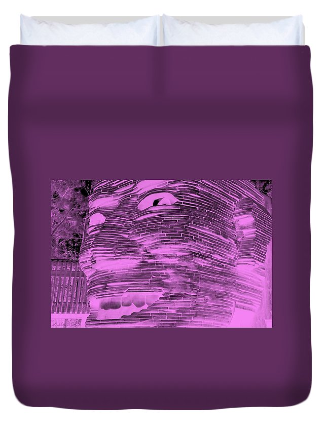 Architecture Duvet Cover featuring the photograph Gentle Giant In Negative Pink by Rob Hans