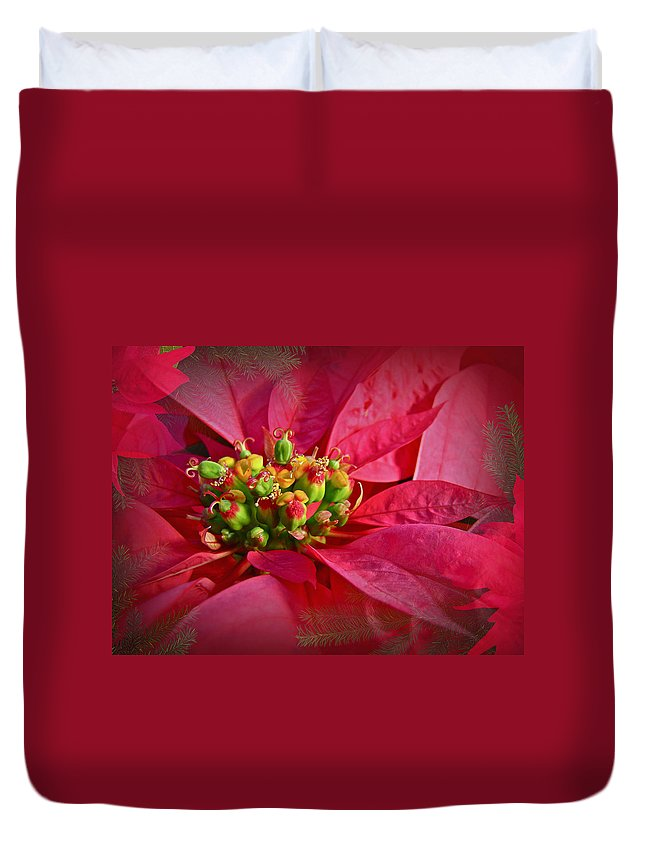 Poinsettia Duvet Cover featuring the photograph Get To The Heart Of It by Mother Nature