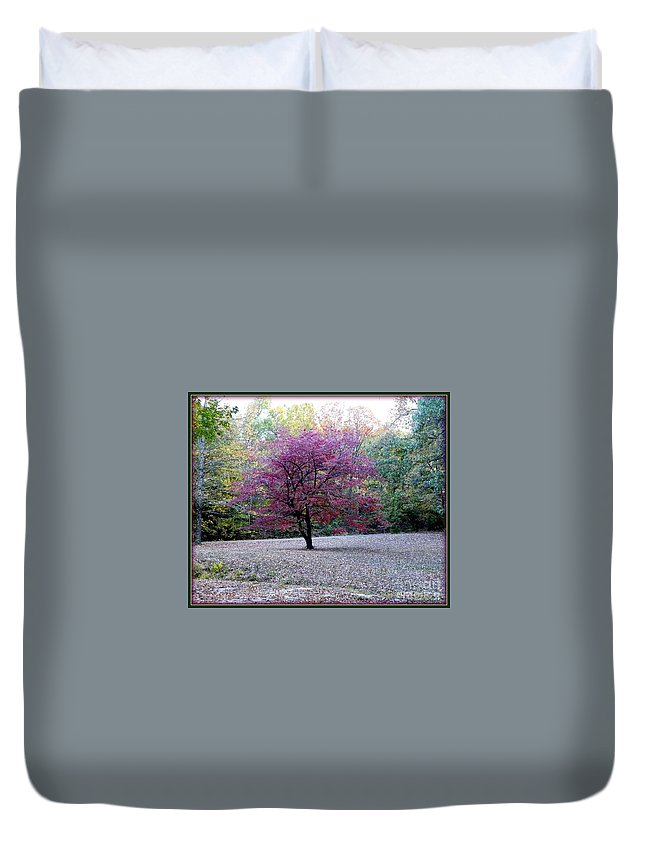 Dogwood Tree Duvet Cover featuring the photograph Glenna's Dogwood In The Fall by Tisha Clinkenbeard