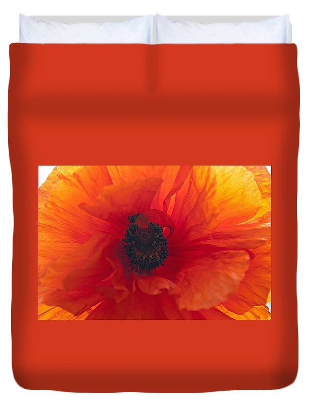 Flower Duvet Cover featuring the photograph Glowing Poppy by Tikvah's Hope