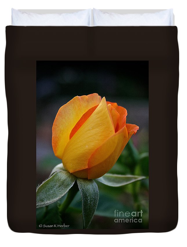Outdoors Duvet Cover featuring the photograph Gold Medal Bud by Susan Herber