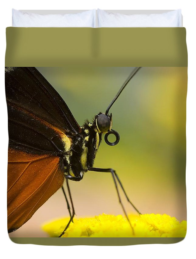 Close-up Duvet Cover featuring the photograph Golden Helicon On Flower by Craig Tuttle