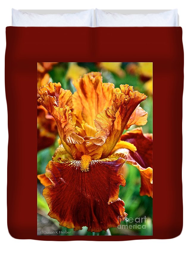 Plant Duvet Cover featuring the photograph Golden Iris by Susan Herber