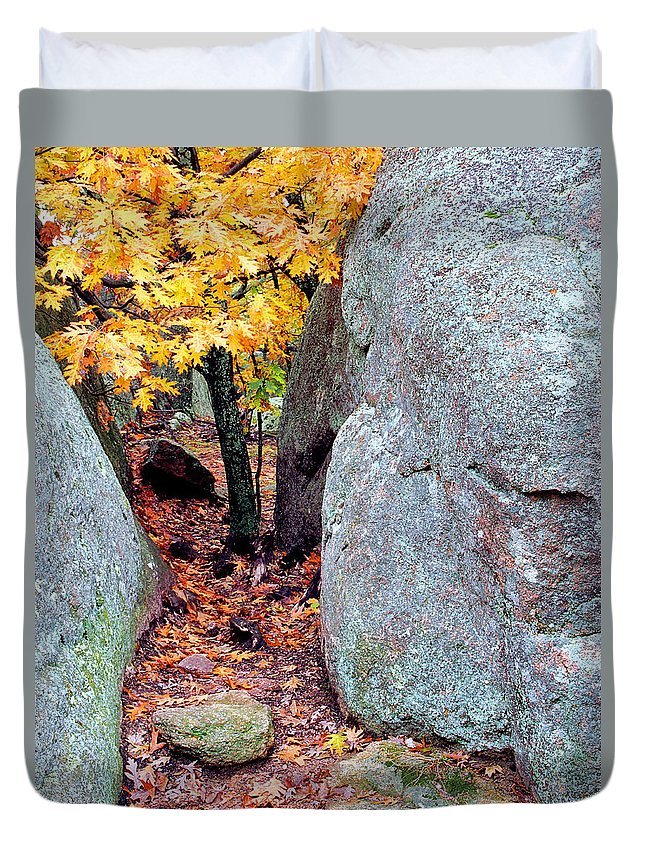 Tree Duvet Cover featuring the photograph Golden Oak Through Boulders At Elephant Rocks State Park by Greg Matchick