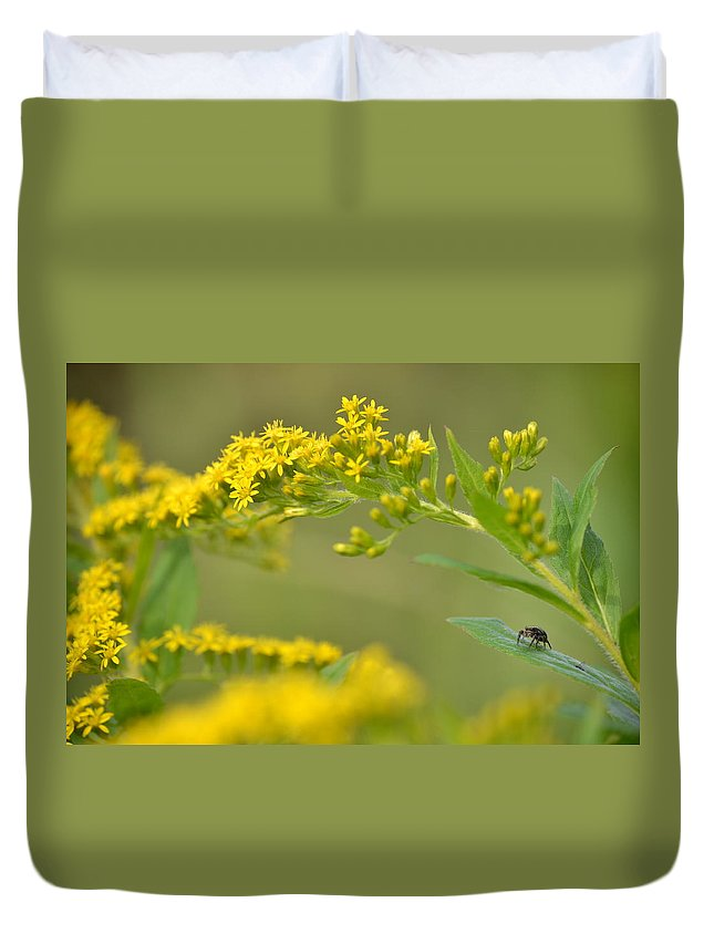 Goldenrod Duvet Cover featuring the photograph Golden Perch by JD Grimes