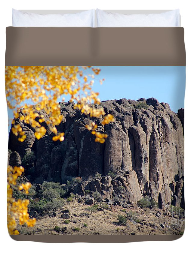 Poster Duvet Cover featuring the photograph Golden Ribs by Alycia Christine