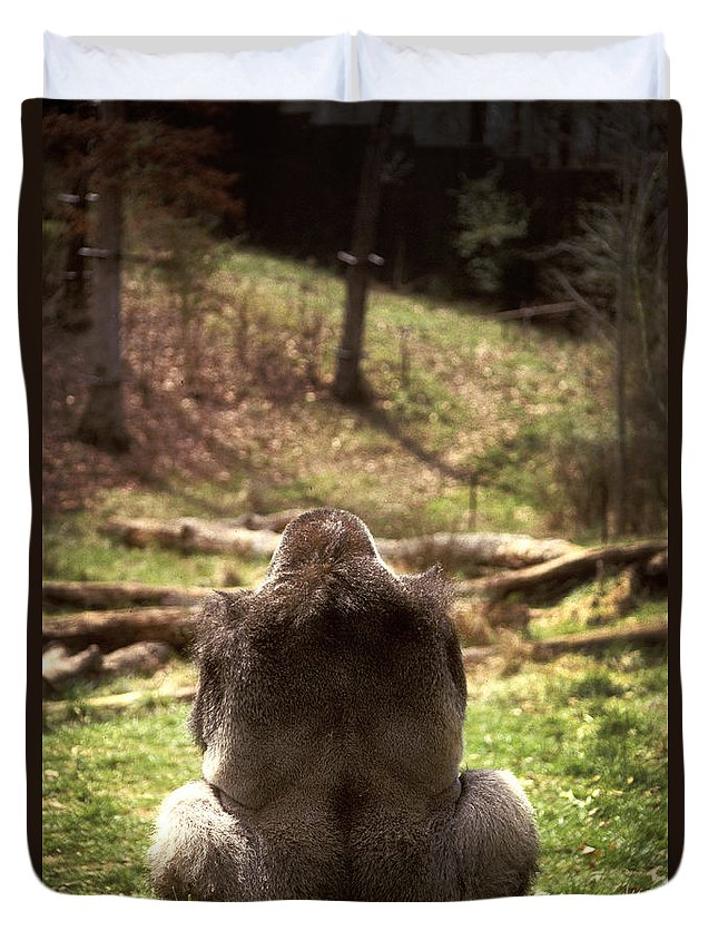 Gorilla Duvet Cover featuring the photograph Gorilla At Peace by Paul W Faust - Impressions of Light
