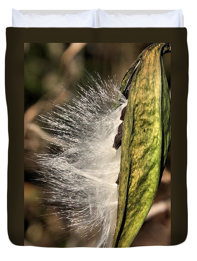 Pods Duvet Cover featuring the photograph Gossamer Wings by Kristin Elmquist