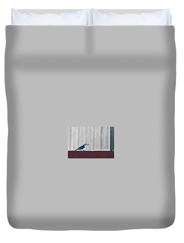 Heron Haven Duvet Cover featuring the photograph Got It by Edward Peterson
