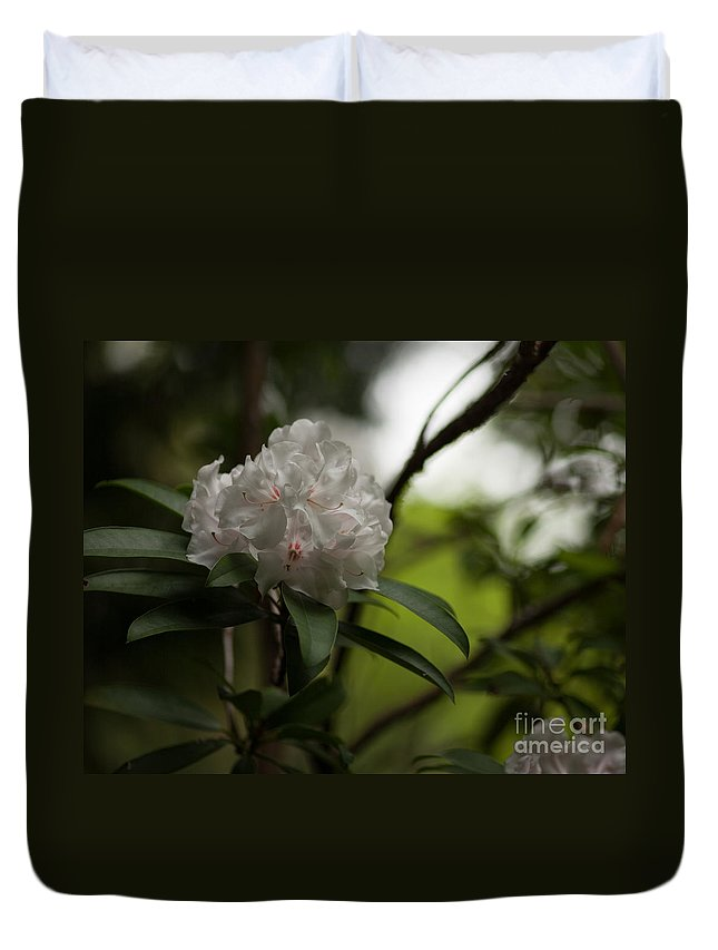 Rhodies Duvet Cover featuring the photograph Gracefully Lit by Mike Reid